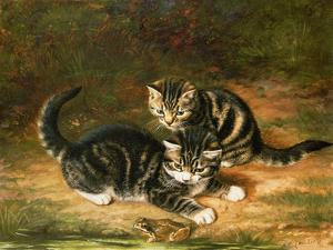 Kittens by Horatio Henry Couldery