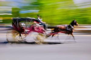 Horse and carriage drives in traffic down Central Park West in Manhattan, New York City, NY
