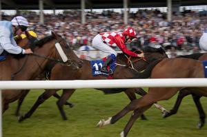 Horse race in Ballinrobe, County Mayo, Connacht, Ireland