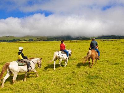 https://imgc.allpostersimages.com/img/posters/horseback-riding-at-parker-ranch-the-big-island-hawaii-united-states-of-america-north-america_u-L-P91U1B0.jpg?p=0