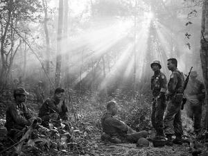 Vietnam War by Horst Faas