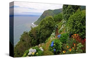 Hortensias and torch lilies on a steep slope near Nordeste, Sao Miguel Island, Azores, Portugal