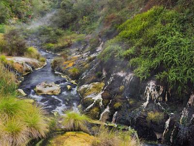 https://imgc.allpostersimages.com/img/posters/hot-springs-waimangu-volcanic-valley-rotorua-bay-of-plenty-north-island-new-zealand_u-L-Q11YR8I0.jpg?p=0