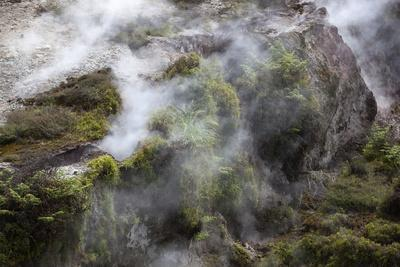 https://imgc.allpostersimages.com/img/posters/hot-steam-craters-of-the-moon-thermal-area-taupo-north-island-new-zealand-pacific_u-L-PQ8NUB0.jpg?p=0