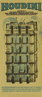Houdini Cage