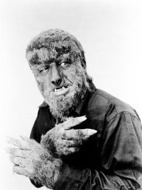 House of Dracula, Lon Chaney, Jr. as 'The Wolf Man', 1945