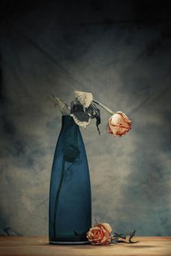 Decay - Dying Rose by Howard Ashton-Jones