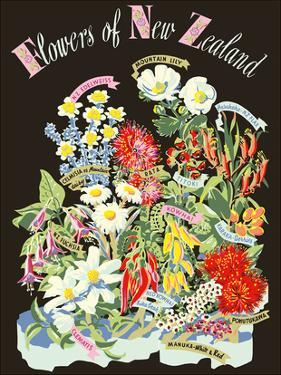 Flowers of New Zealand by Howard Mallitte