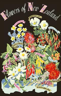 Flowers of New Zealand by Howard Mallitte