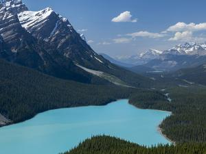 Bright Turquoise Colored Peyto Lake from the Bow Summit in Banff National Park, Canada. by Howard Newcomb