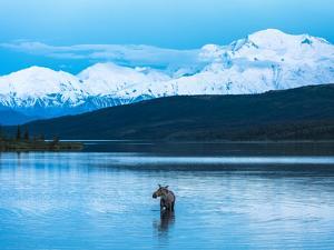 Wonder Lake in Denali National Park, Alaska. by Howard Newcomb