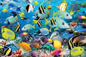 Ocean Colours by Howard Robinson