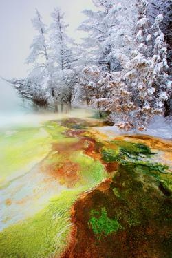 Yellowstone Basin by Howard Ruby