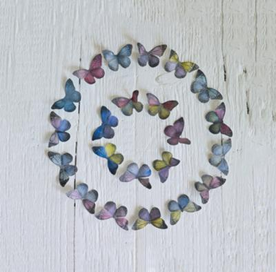 Butterfly Circle by Howard Shooter