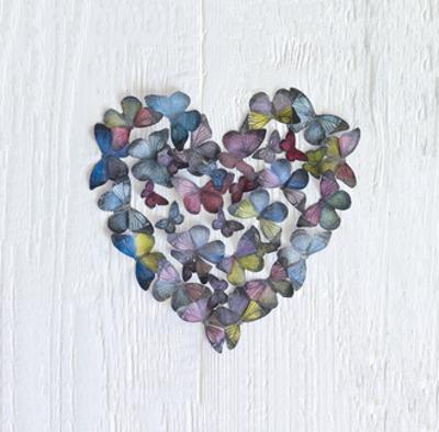 Butterfly Heart by Howard Shooter