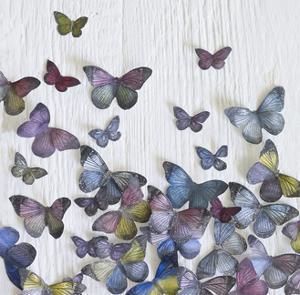 Butterfly Random by Howard Shooter