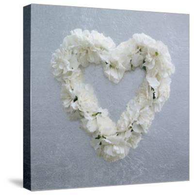 Carnation Heart by Howard Shooter