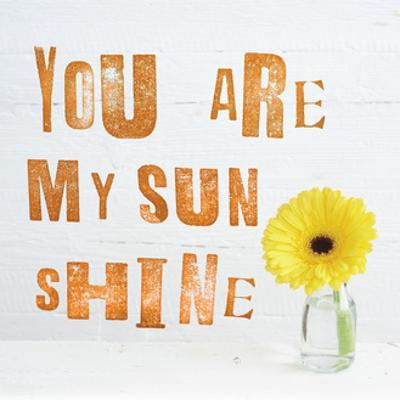 You Are My Sun Shine by Howard Shooter