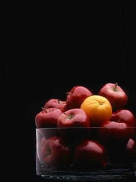 Apples and Oranges by Howard Sokol
