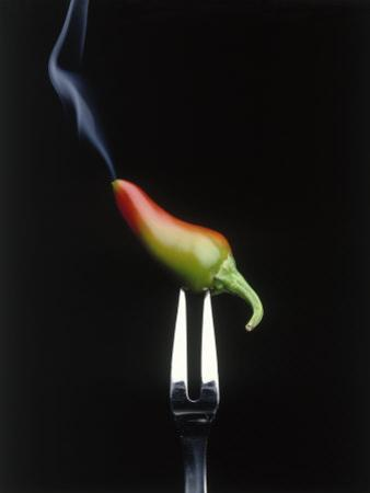 Steaming Chili Pepper on Fork by Howard Sokol