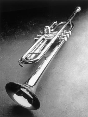 Trumpet by Howard Sokol