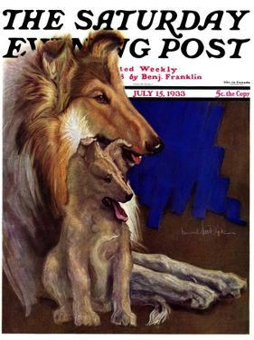 """Mother Collie and Pup,"" Saturday Evening Post Cover, July 15, 1933 by Howard Van Dyck"