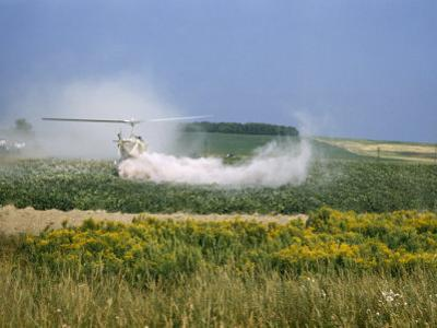 Crop-Dusting Helicopter Hovers Low over a Potato Field