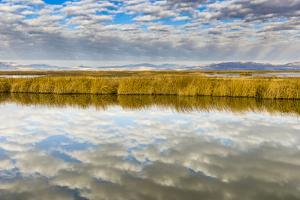 Cloud Reflection on Bear River National Wildlife Refuge, Utah by Howie Garber