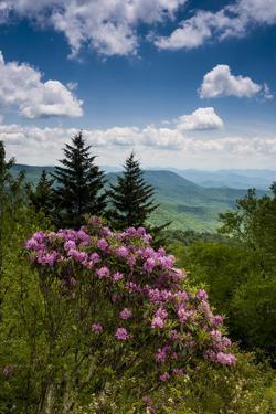 Cowee Mountain Overlook, Blue Ridge Parkway, North Carolina by Howie Garber