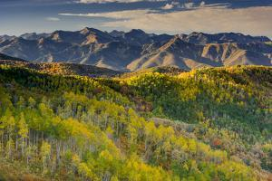 Mountain Landscape in Fall Color, East Canyon, Utah by Howie Garber