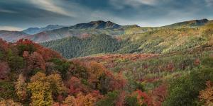 Multicolored fall panoramic landscape, Wasatch Mountains, near Park City and Midway, Utah, USA. by Howie Garber