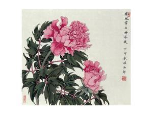Peonies in Spring by Hsi-Tsun Chang