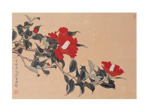 Red Cap Flower by Hsi-Tsun Chang