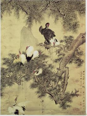 Eight Red-Crested Herons in a Pine Tree, 1754 by Hua Yan
