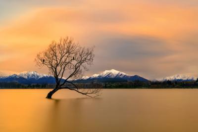 Morning glow of the Lake Wanaka by Hua Zhu