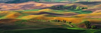 The Palouse by Hua Zhu