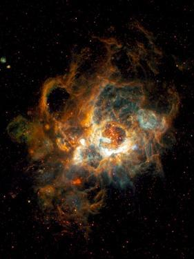 Hubble Space Telescope View of Nebula NGC 604