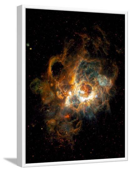 Hubble Space Telescope View of Nebula NGC 604--Framed Photographic Print