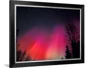 Curtains of Northern Lights above Fairbanks, Alaska, USA by Hugh Rose