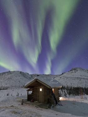 Northern Lights, White Mountain National Recreation Area, Alaska, USA by Hugh Rose