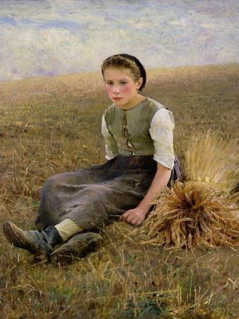 The Little Gleaner, 1884
