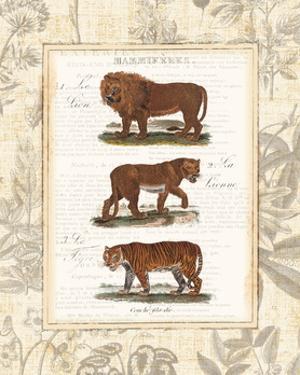 African Animals IV by Hugo Wild