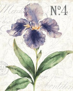 Bloom II by Hugo Wild