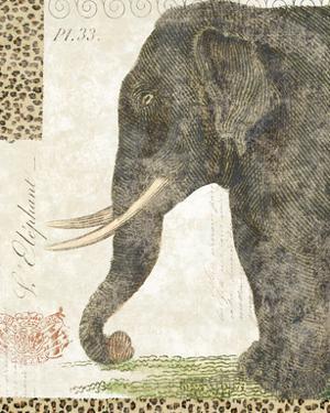 L'Elephant by Hugo Wild