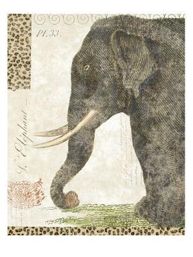 L'Elephant by Hugo Wild