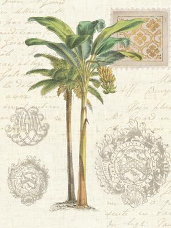 Vintage Palm Study I by Hugo Wild