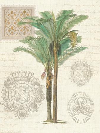 Vintage Palm Study II by Hugo Wild