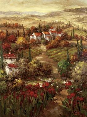 Tuscan Village by Hulsey