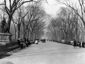 Central Park by Hulton Archive