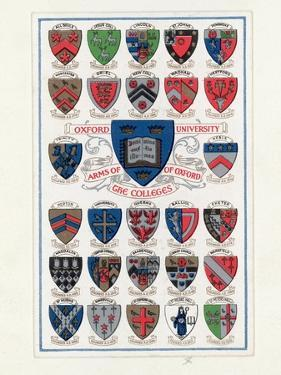 Heraldic Shields by Hulton Archive